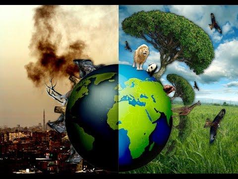 Macam Macam Polusi, Penyebab Dan Dampak