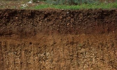 Pengertian Tanah dan Komponen Penyusun Tanah