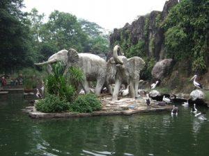 Kebun binatang ragunan Jakarta - Tempat Wisata Liburan Jalan Jalan