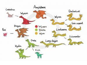 dragon wyvern wyrm