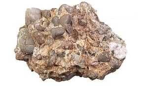 Batu Konglomerat