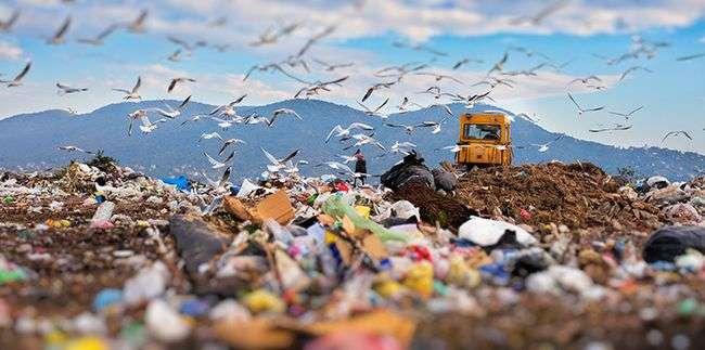 Polusi Tanah Penyebab, Dampak Dan Contoh Solusi