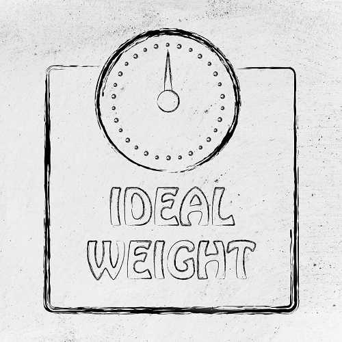 Makanan dan Minuman Diet