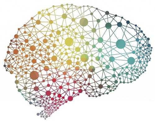 Memori Ingatan Otak