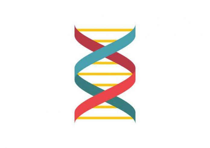 Pengertian Biologis Adalah Arti, Perkembangan Intelektual, Fisik dan Perseptual