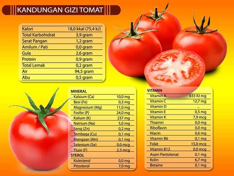 Gambar 2-Kandungan Gizi Tomat