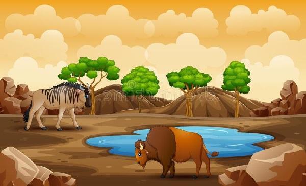 Ekosistem Darat Ciri Ciri, Manfaat, Komponen, Macam Jenis dan Contoh