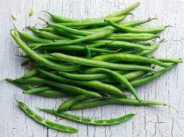 Gambar 1-Kacang Buncis