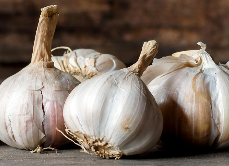 Gambar 5-Bawang putih bisa menurunkan kolesterol dan tekanan darah tinggi.