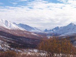 Bioma Tundra Adalah Definisi Arti, Contoh, Gambar, Pengertian, Ciri, Iklim, Macam Jenis, Flora dan Fauna