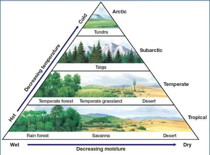 Definisi Bioma adalah Pengertian, Fungsi, Ciri-Ciri, Faktor Macam Jenis dan Contoh Gambar