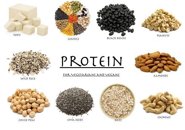 Pengertian Protein Adalah Definisi Arti Vegan Unsur Penyusun, Struktur, Golongan dan Contoh Macam Jenis