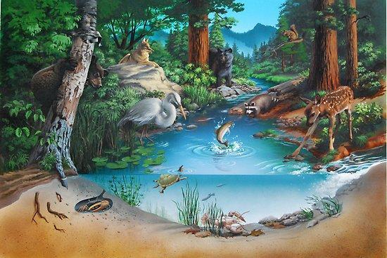 Rantai Makanan Sungai Adalah Ciri-ciri Ekosistem, Komponen, dan Contoh Gambar Fauna
