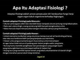 Adaptasi Fisiologi Adalah Arti Definisi Pengertian, Contoh pada Hewan, Manusia dan Tumbuhan