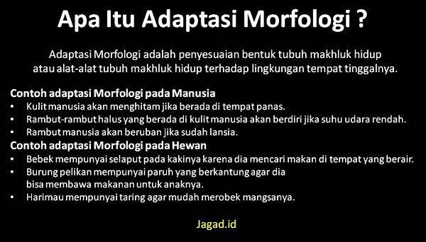 Adaptasi Morfologi Adalah Arti Definisi Pengertian, Macam Jenis dan Contoh