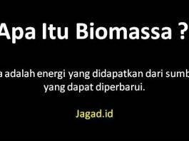 Pengertian Biomassa Adalah Definisi Arti Prinsip Dasar, Kelebihan, Kekurangan, Jenis dan Contoh