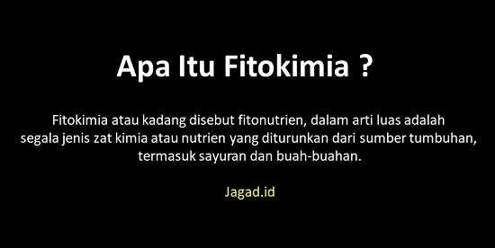 Pengertian Fitokimia Adalah Arti Definisi Macam Jenis Senyawa dan Contohnya