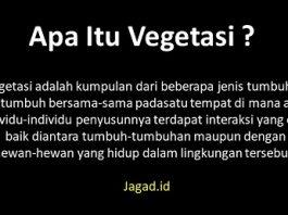 Pengertian Vegetasi Adalah Yaitu Arti Definisi Jenis, Ciri Ciri dan Contoh