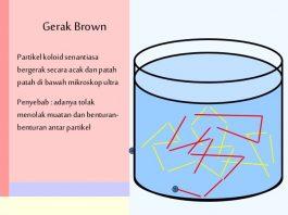 Gerak Brown serta Fenomena Keteracakan