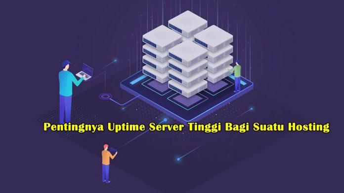 Pentingnya Uptime Server Tinggi Bagi Suatu Hosting